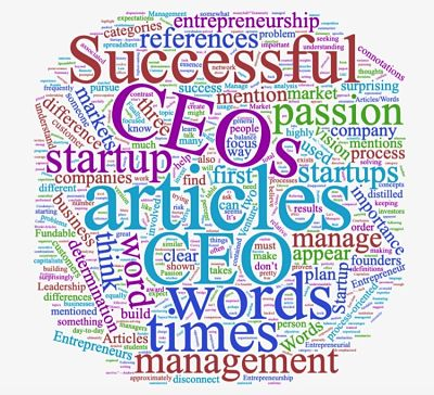 Entrepreneurship vs. Executive Management