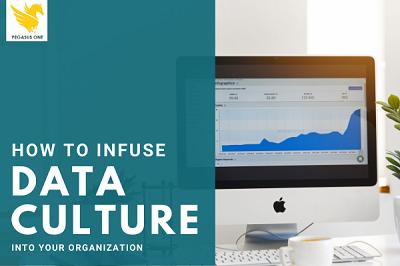 Infusing data culture